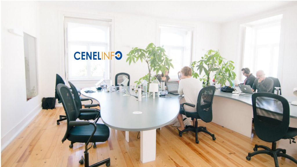 Cenel Info Consultoria em Sistemas