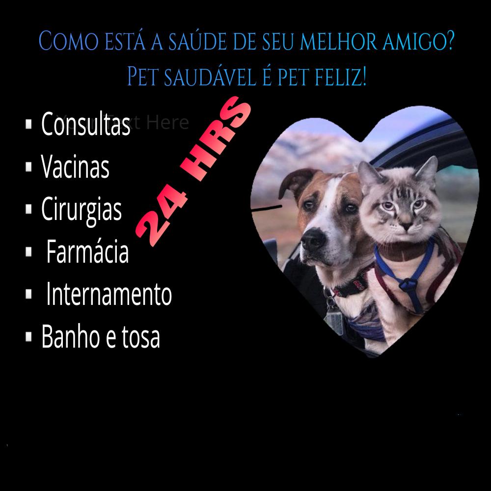 Clínica Veterinária Casa Do Au Au